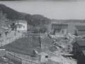 Butter Cove circa 1960