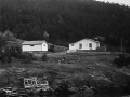 Lawrence & Nellie Bishop's house,  Hatchet Cove. (Photo by Packet, 1994)