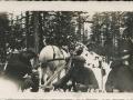 Harold and Hayward and HJ and Horse Darkie 1937