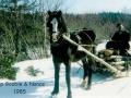 William Goobie and horse Queens Cove