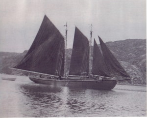 R.A. Squires under full sail leaving St. Jones Without for the Labrador fishery. This was the schooner purchased by Gordon Banton from Adam Green.