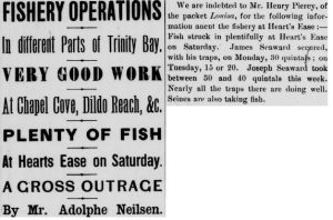 Plenty of Fish Heart's Ease_July 01 1889_2_Eveneing Telegram