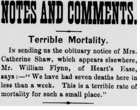 Terrible Moratility_William Flynn_June 12 1891