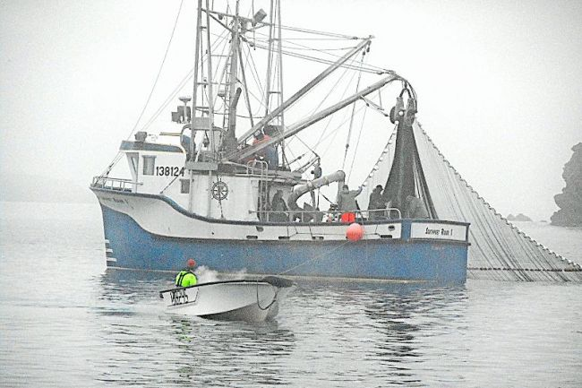 Image gallery seiner boat for Purse seine fishing