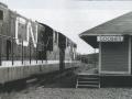 Goobies Train Station